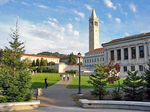 Berkeley_glade_afternoon.jpg